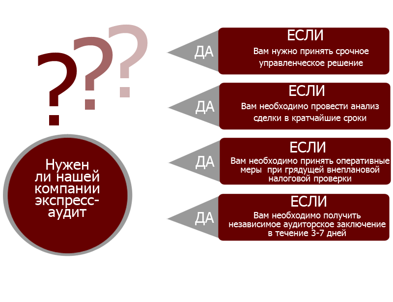 экспресс-аудит1-1